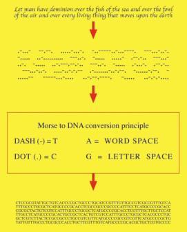 Genesis-code